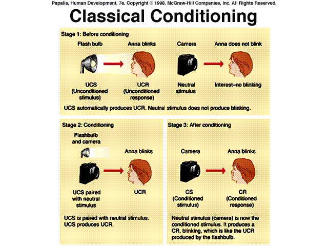The use of classical conditioning in | Coursework Academic Service ...